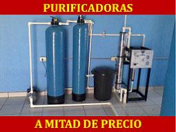 planta-paquete-promocion-pag-2